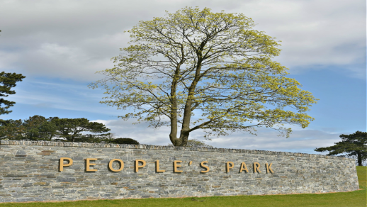 Find Out More About Peoples Park, Portadown